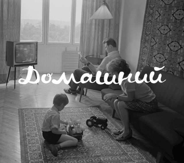 domashny_past